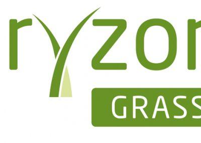 ORYZON GRASS Q